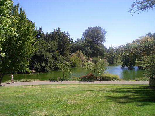 Vivere e studiare a Davis, California