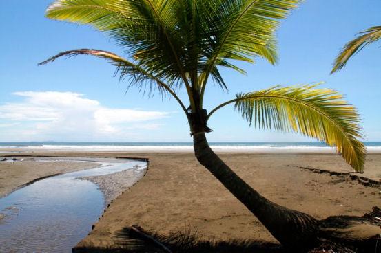 Aprire un bed breakfast sulla spiaggia a panama for Posso ottenere un mutuo solo sulla terra