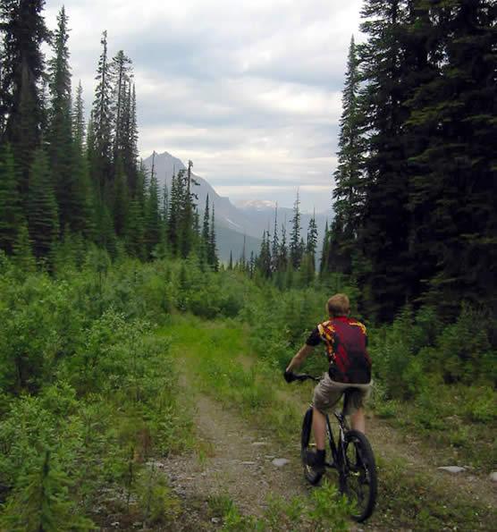 Filosofia della pedalata bicicletta