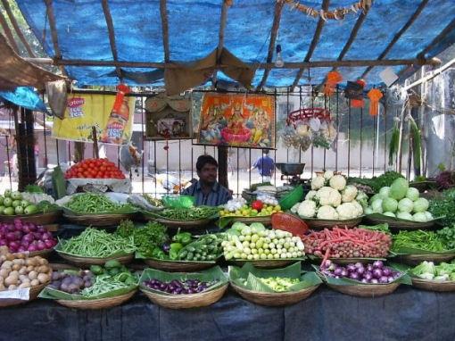 Chiara Dimase a Mumbai