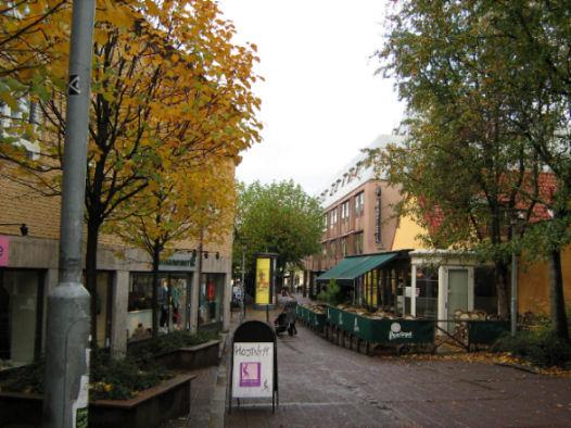 Studiare in Svezia, Università di Lund
