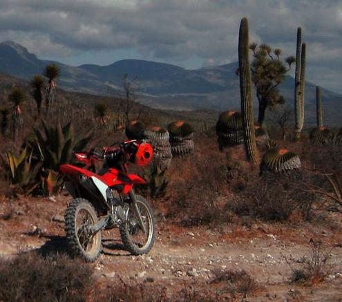 Vivere e lavorare in Messico sport