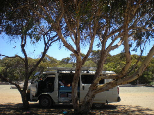 Viaggio in Australia su quattro ruote  Van