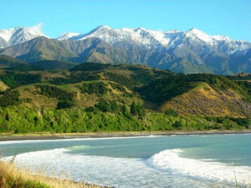 Vivere in Nuova Zelanda farm