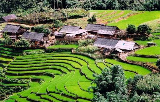 Fare business in Vietnam