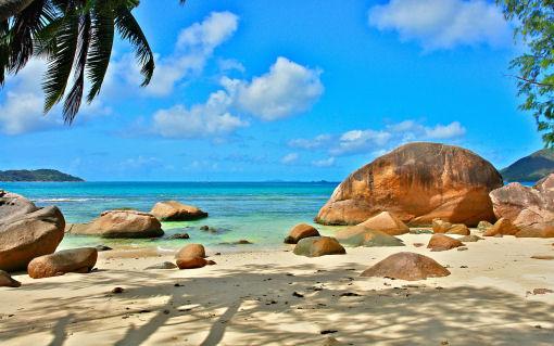 Sognando le Seychelles