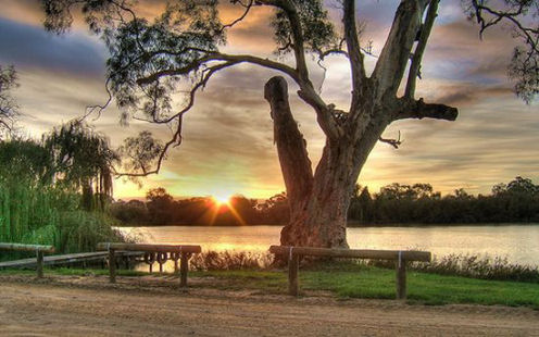 natura australiana trasferimento