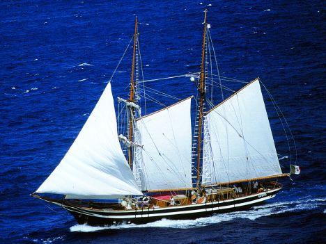 vivere in mare skipper