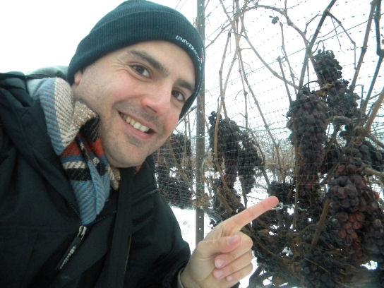 Mario Cagnetta, giornalista