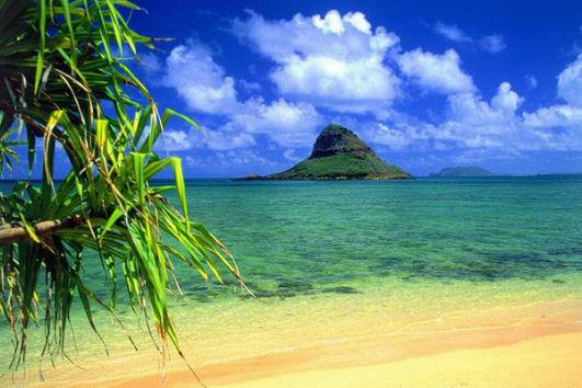 Vivere e lavorare alle Hawaii, Honolulu