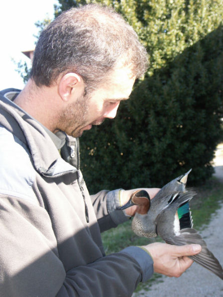 Mario Muzzatti ornitologo