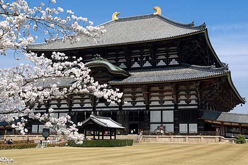 Nara Giappone fukuoka