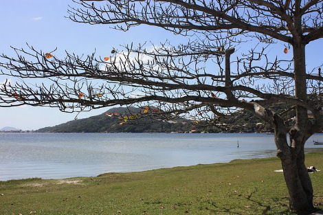 Aprire una Pousada in Brasile florianopolis