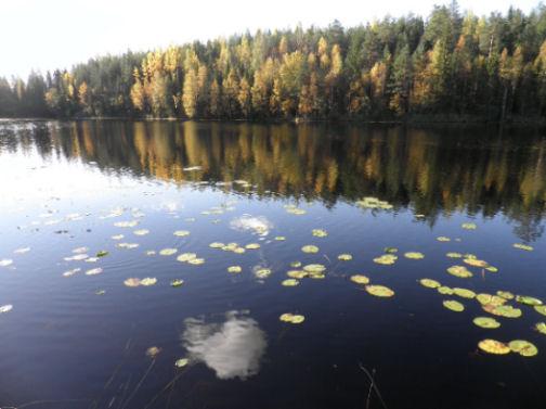 Dona Foa, vivere in Finlandia
