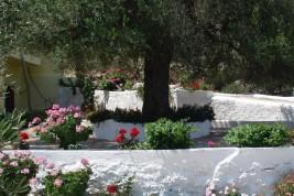 b&b Creta