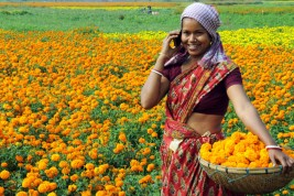 suraj - india smartphone