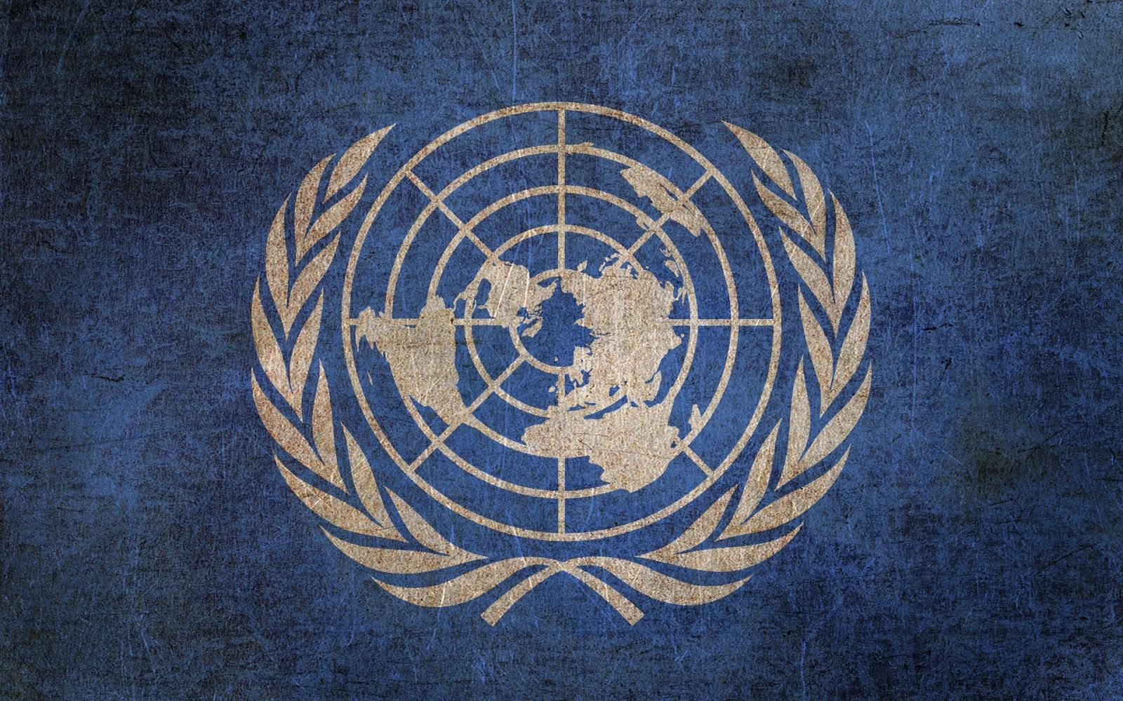Lavorare all'Onu si può: cercasi giovani funzionari italiani