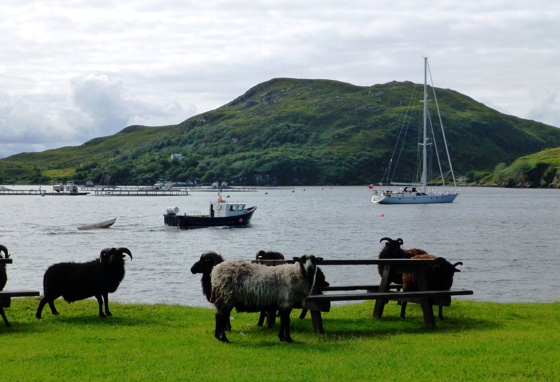 Vendesi isola in Scozia, completa di scuola ed ufficio ...