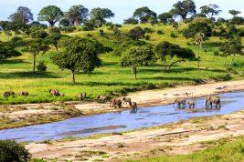 trasferirsi in tanzania