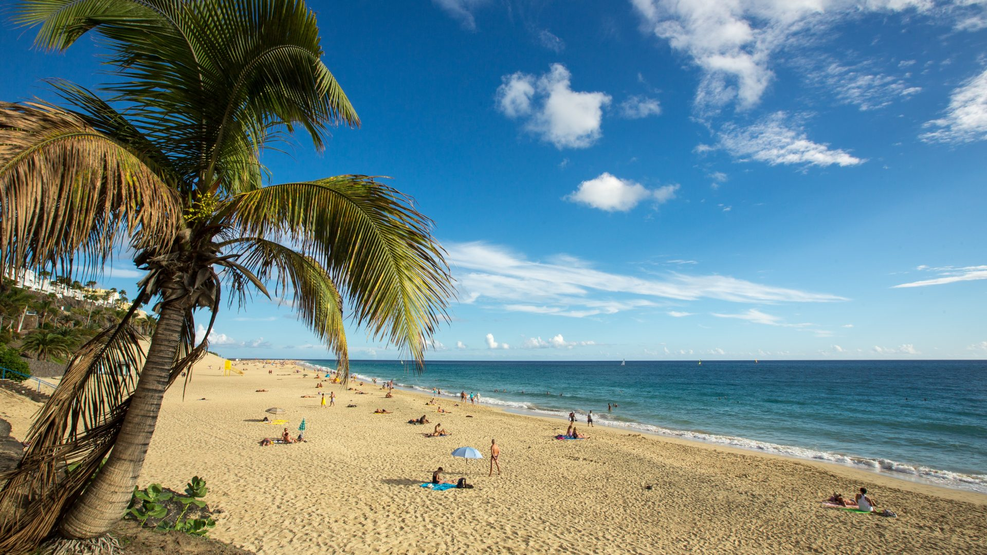 Sole e business: dieci buoni motivi per investire alle Canarie