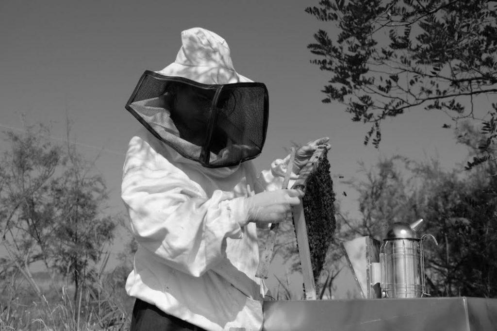 Viola Servi: la mia strada verso l'apicoltura