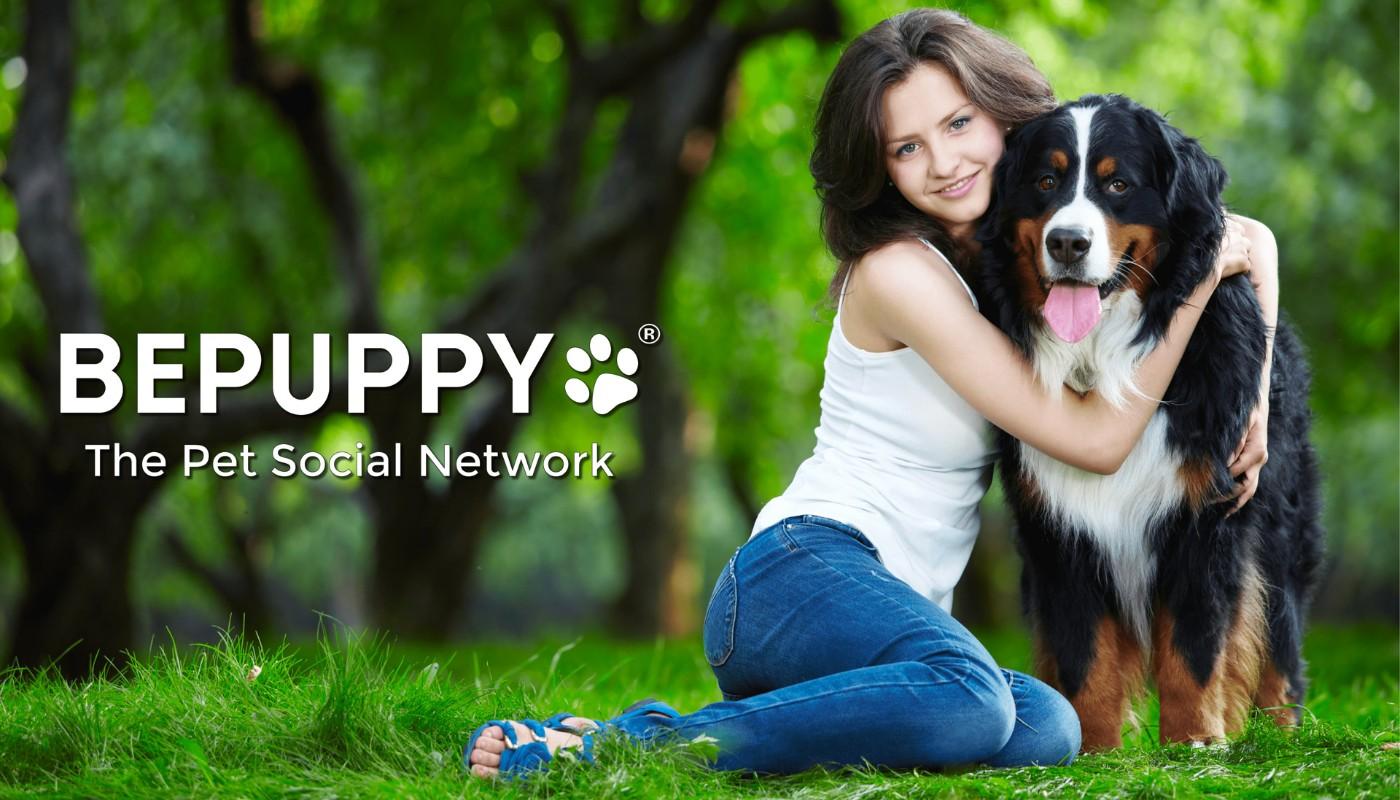 Social network dedicati al mondo degli animali domestici: Bepuppy