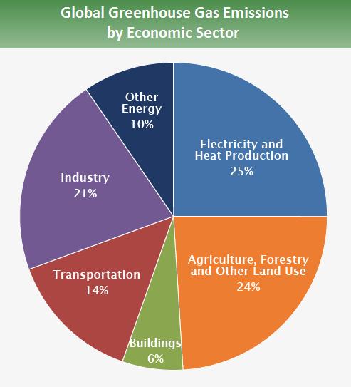 Gas serra emissione per settori