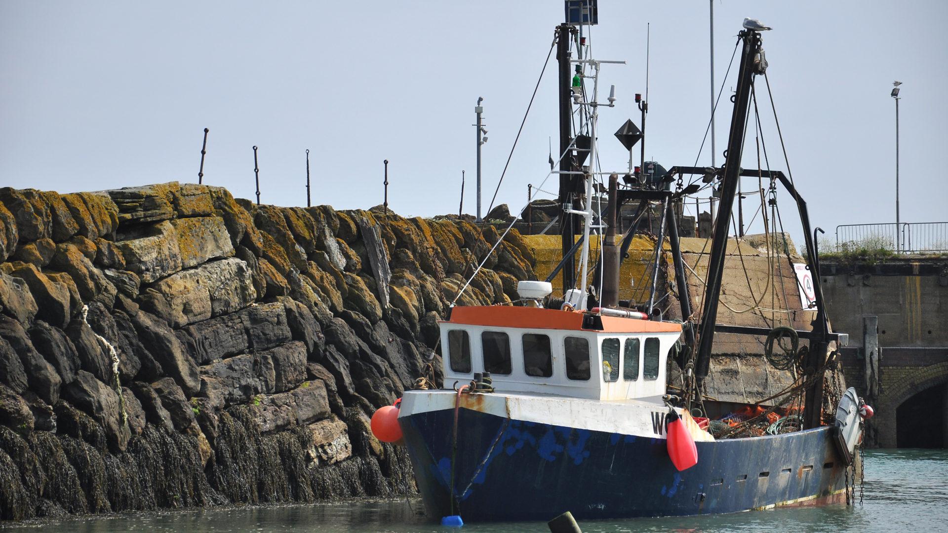 Barche a vela, houseboat e persino una zattera: idee per vacanze alternative