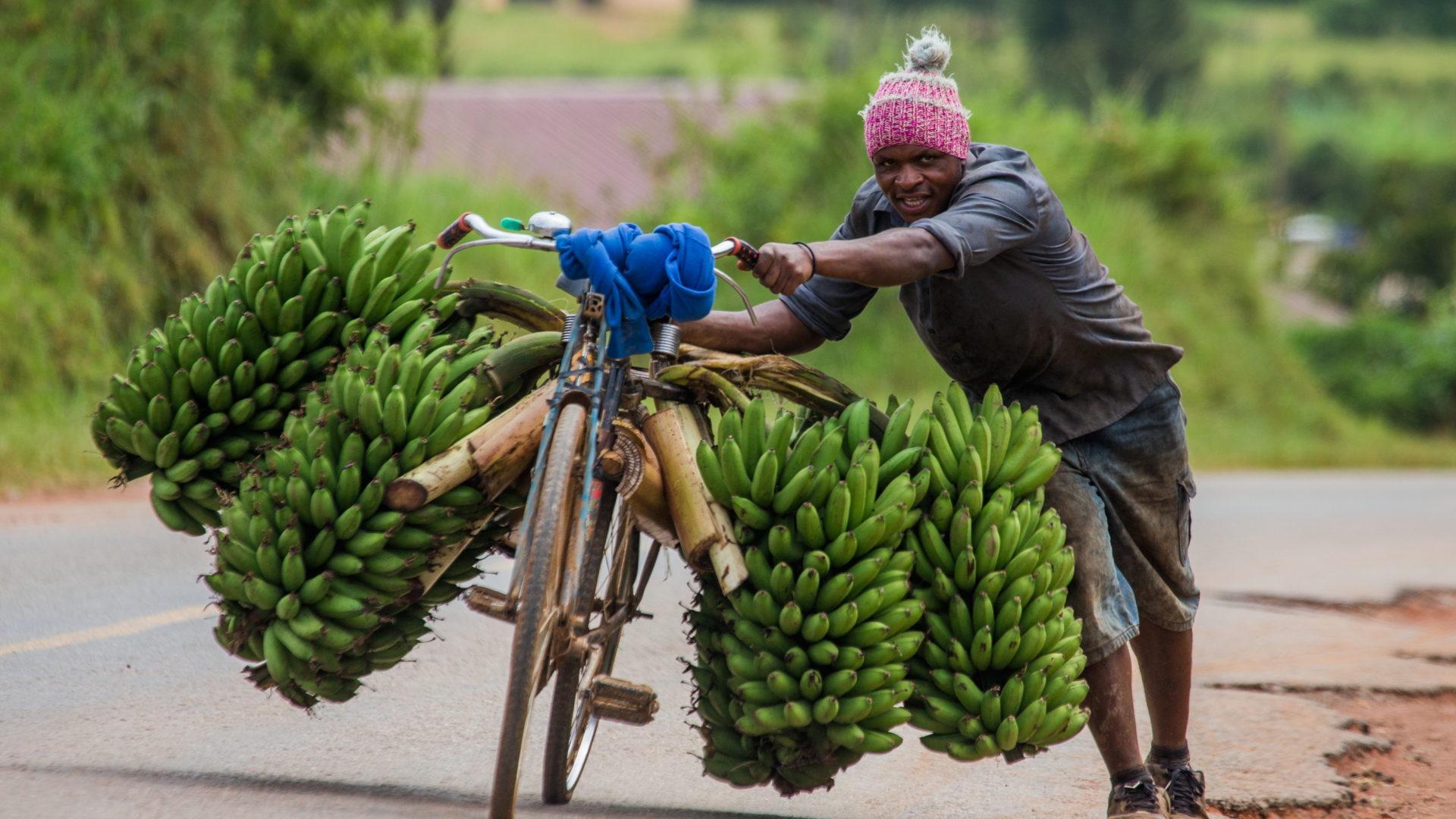 vivere in uganda