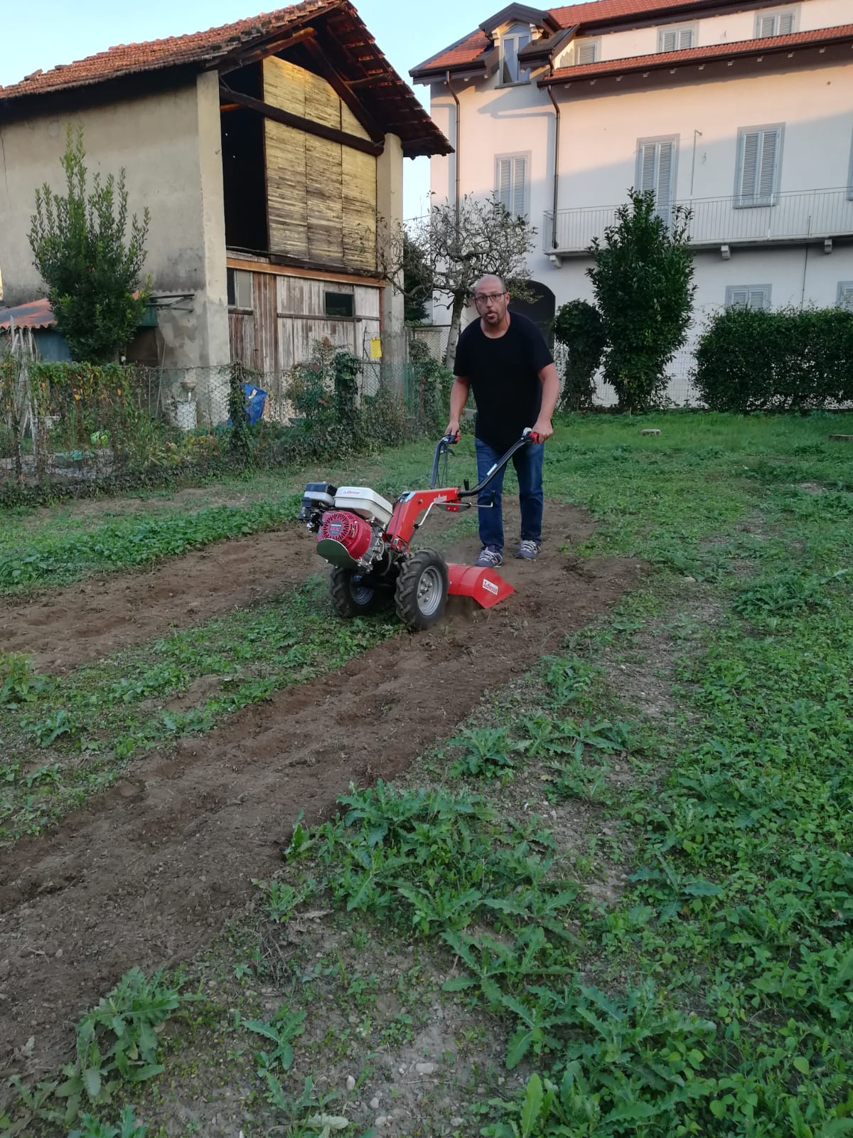 daniele mazzini giardiniere