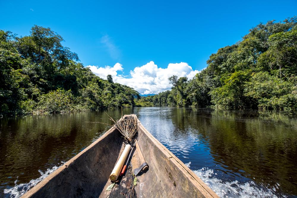 Le Savane del Venezuela: Gran Sabana e Los Llanos