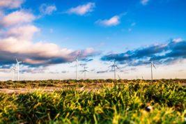 Green Network Energy
