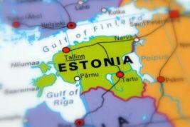 nuova vita estonia