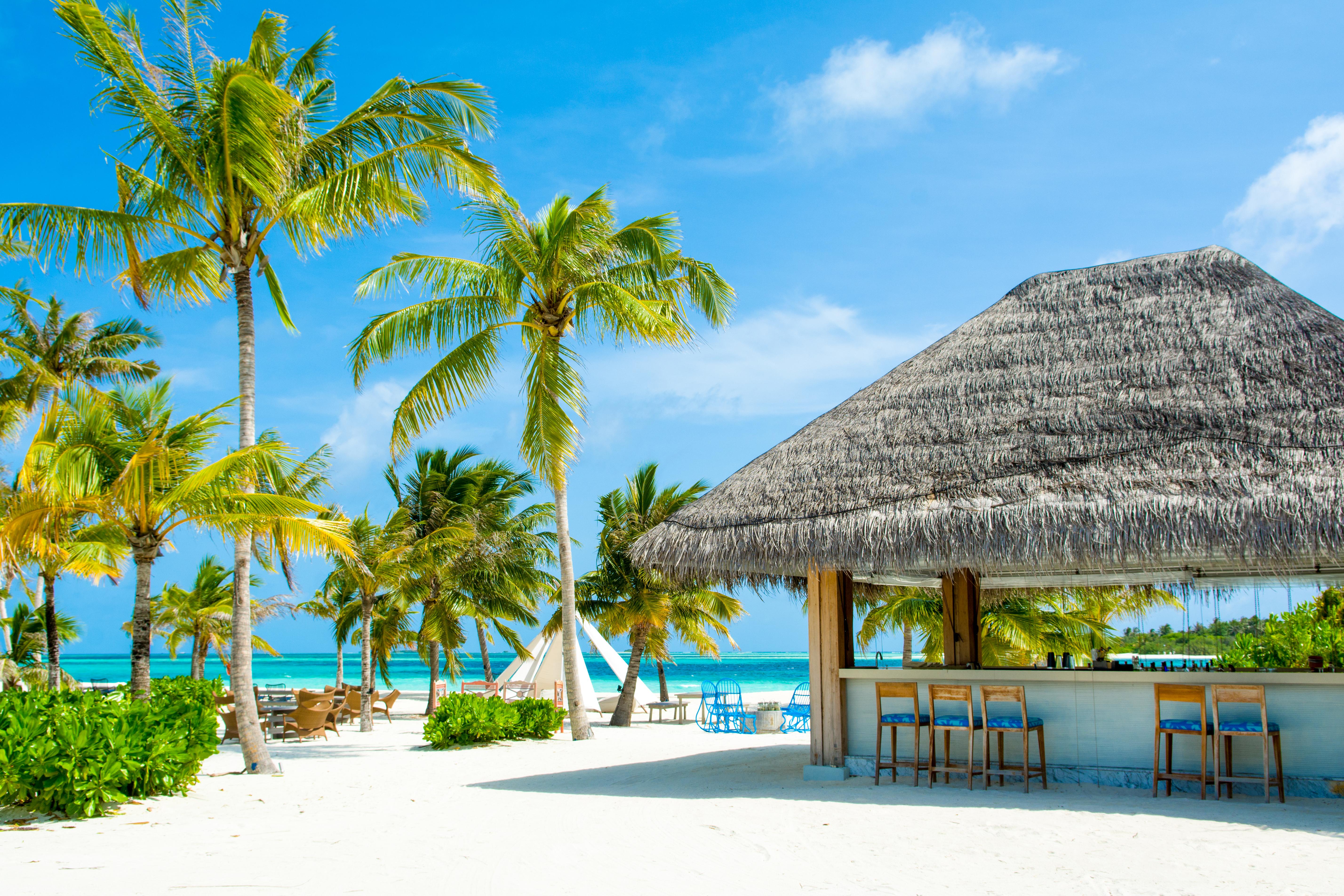 nuova vita alle maldive