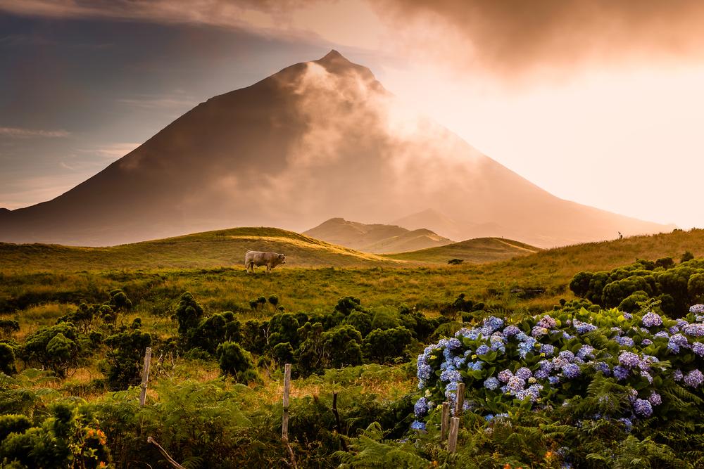 vulcanp pico portogallo azzorre