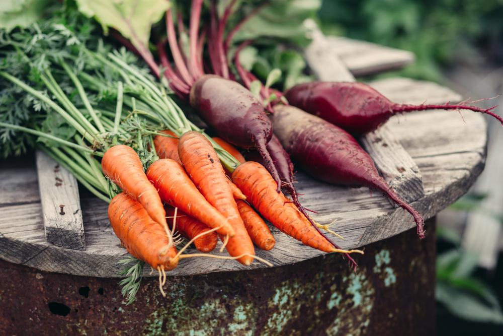 Vivere in un Ecovillaggio frutta e verdura