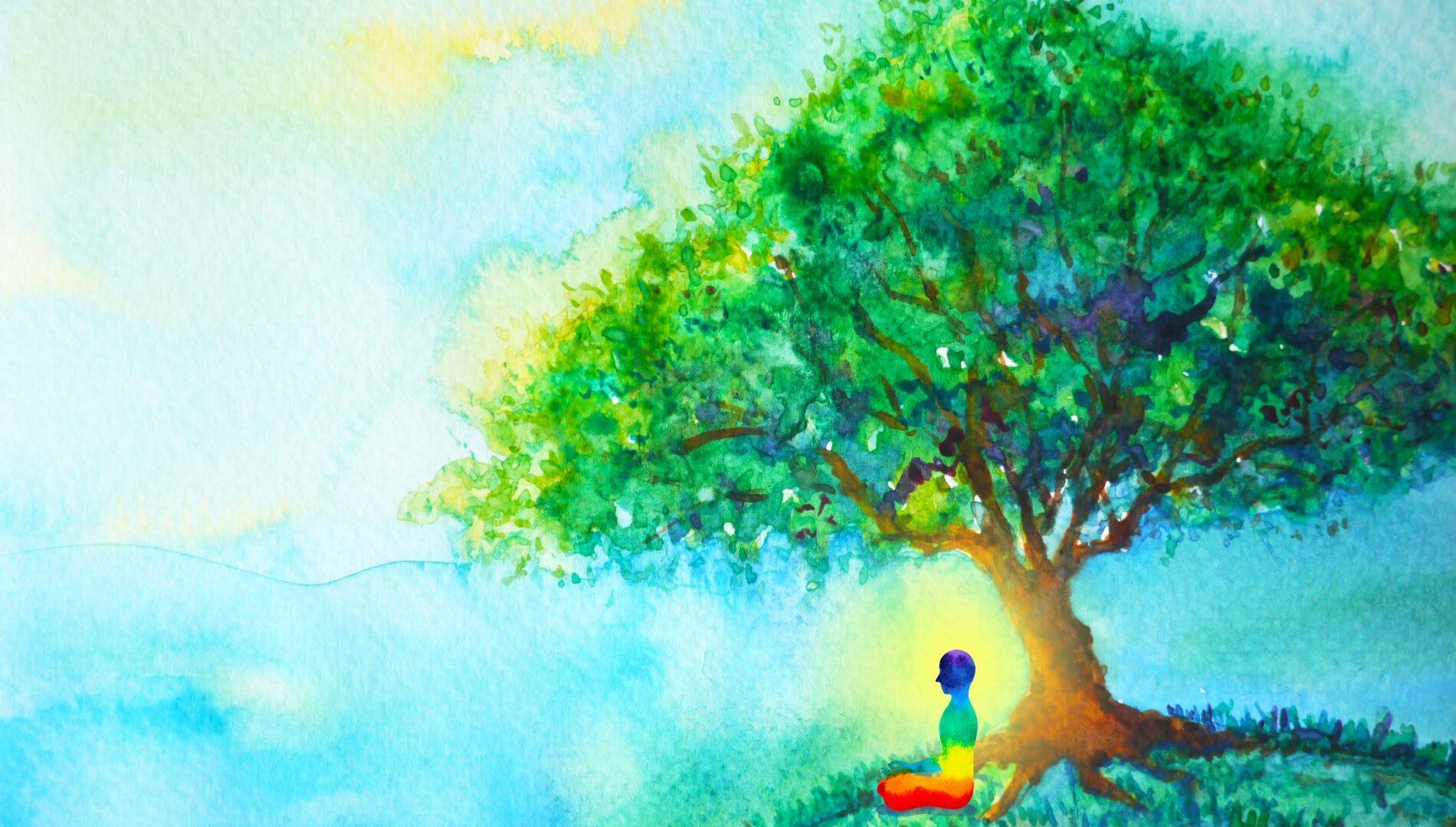 Mindfulness: come funziona, benefici, esercizi, app e libri