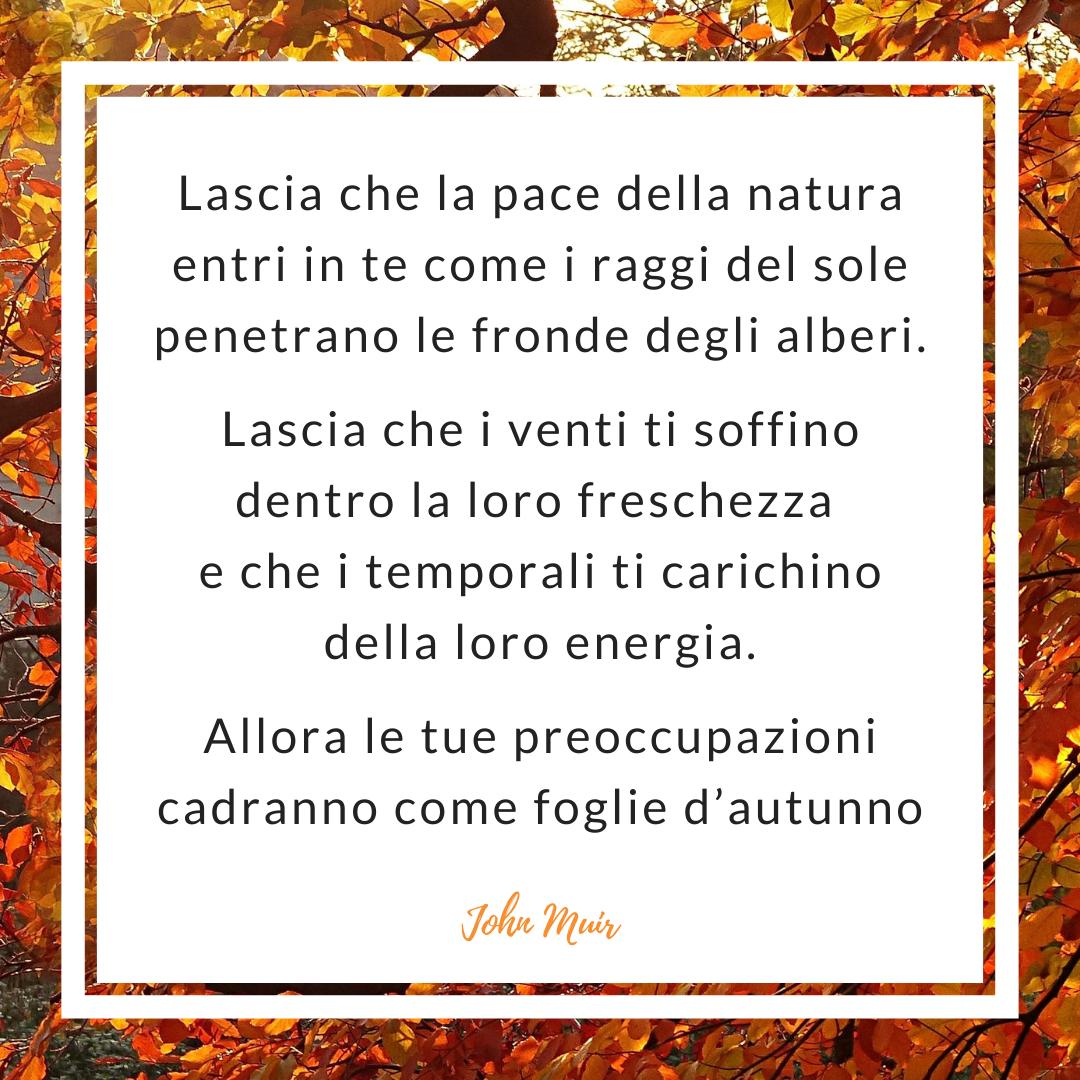 Frasi sul vento d'autunno