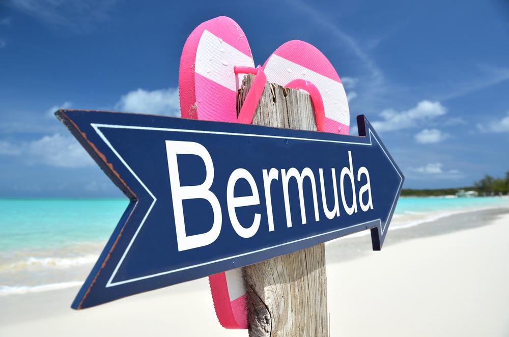 bermuda smart workers