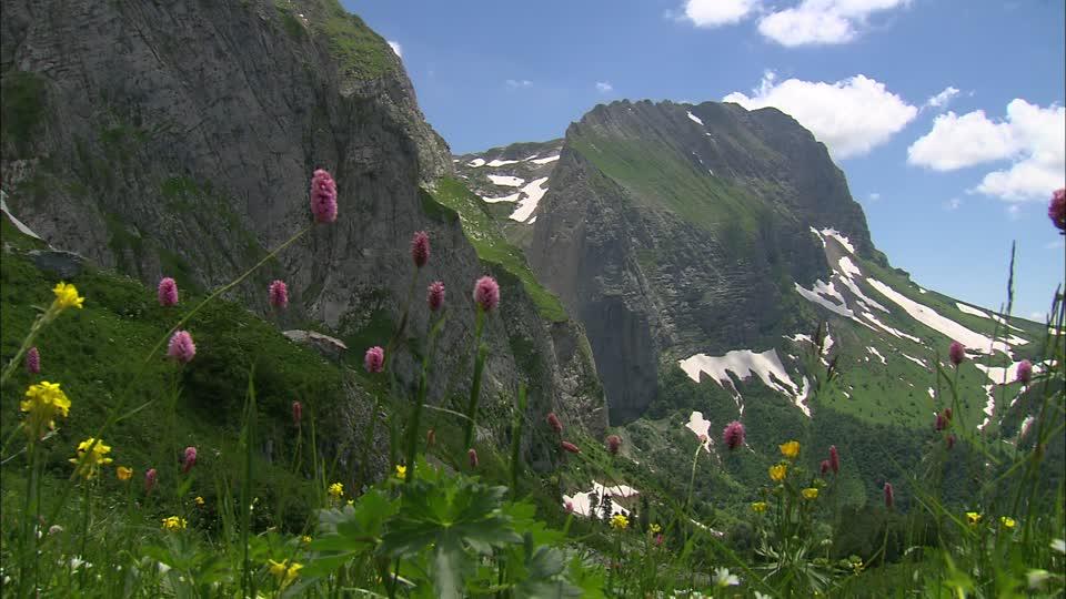 Visitare il Caucaso