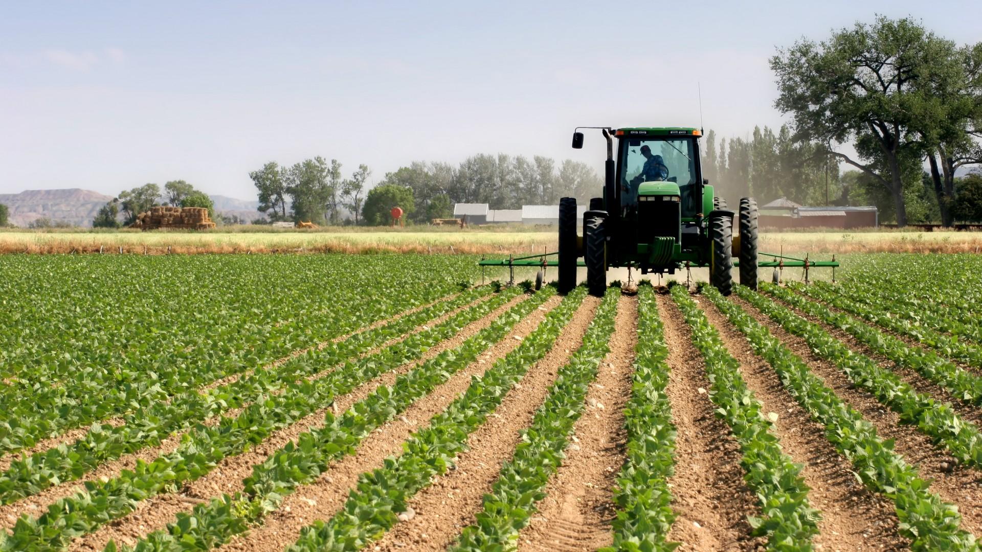 Italia lavorare in campagna