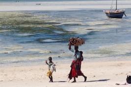 volontariato Africa