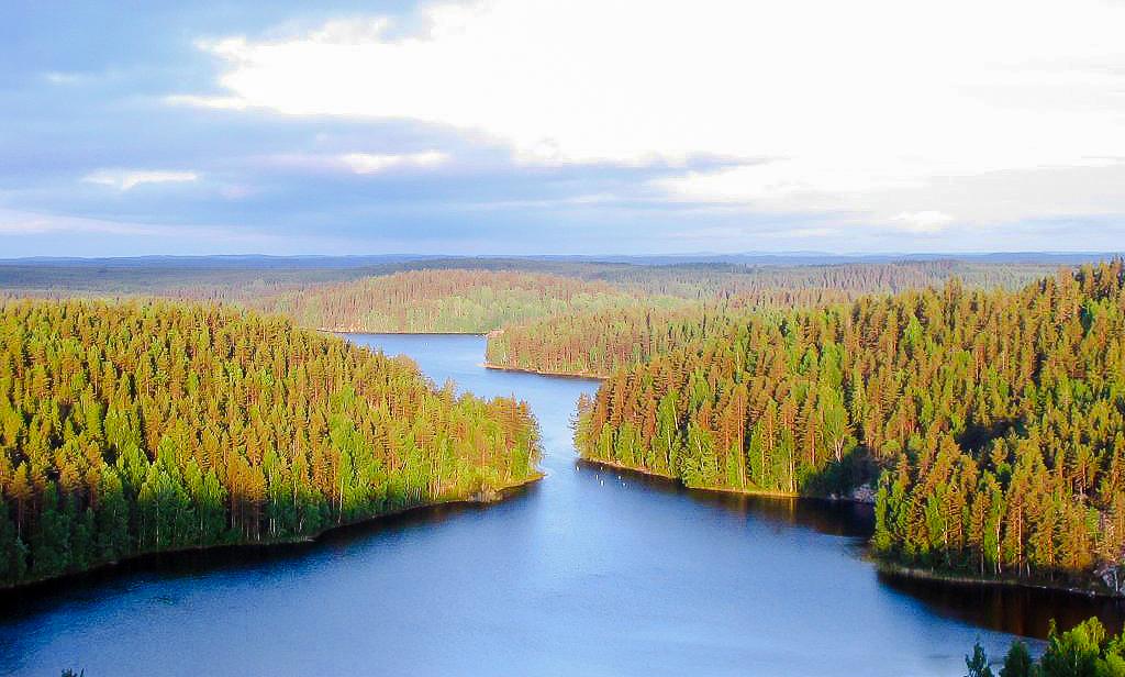 andare a studiare in Finlandia