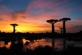 sport e viaggi in Madagascar
