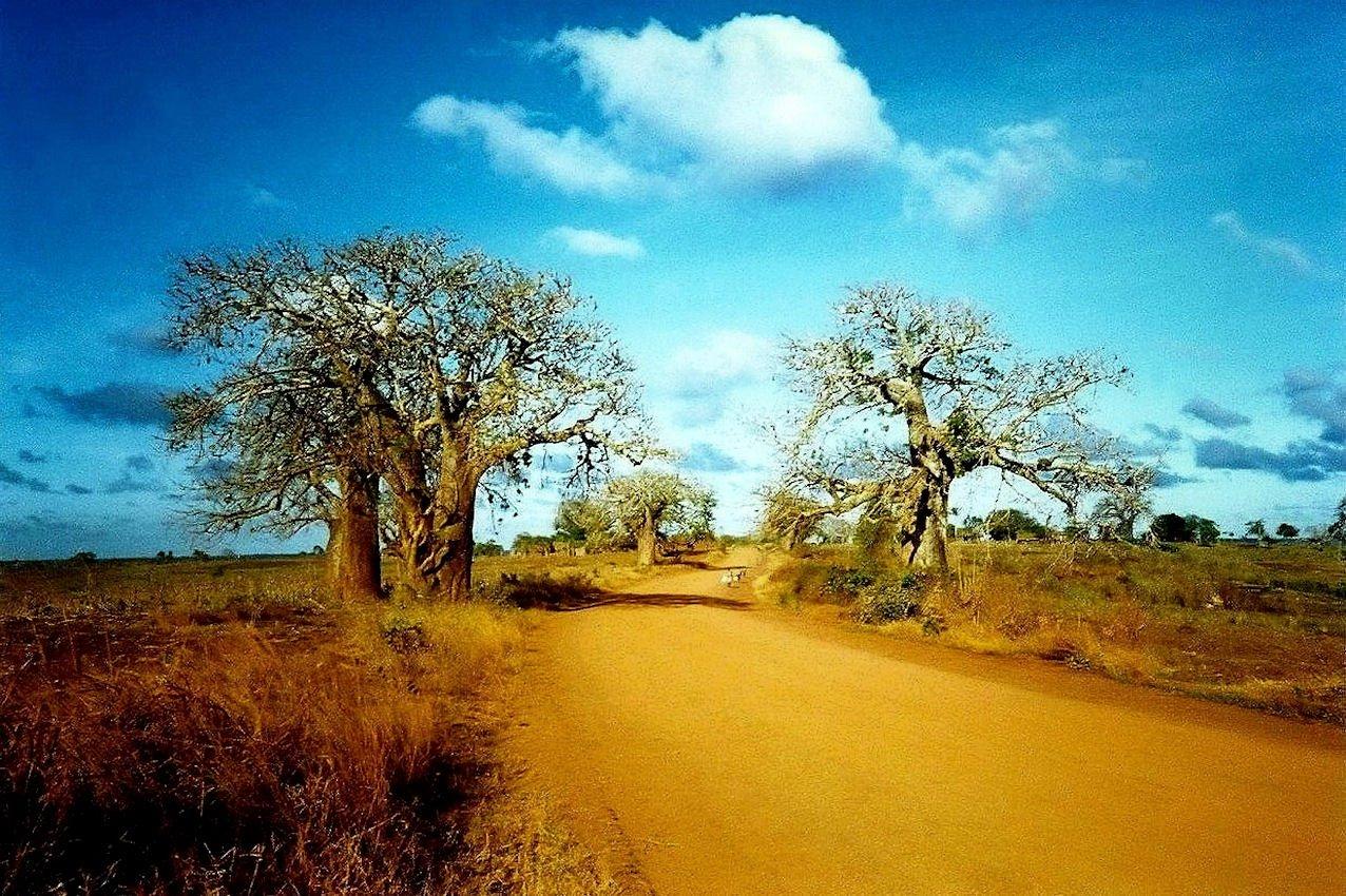 Viaggiare in Africa