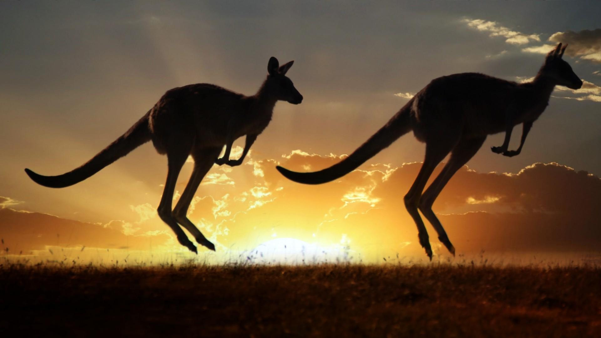 info utili per trasferirsi in Australia