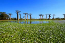 vacanze Madagascar
