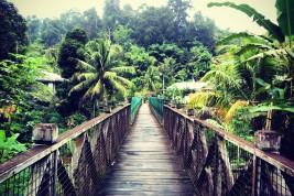 avventure nel borneo malese