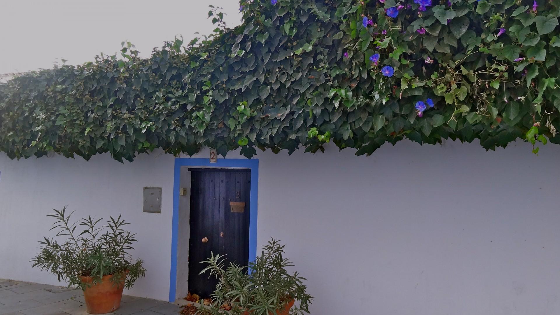 Andare a vivere ad Ibiza