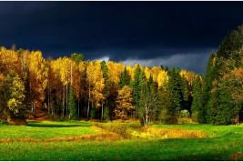 Vivere in Finlandia: intervista con Dona Foa